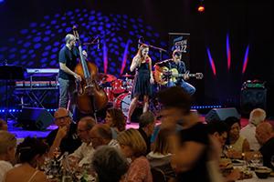 lgp-galerie-photos-concert-3